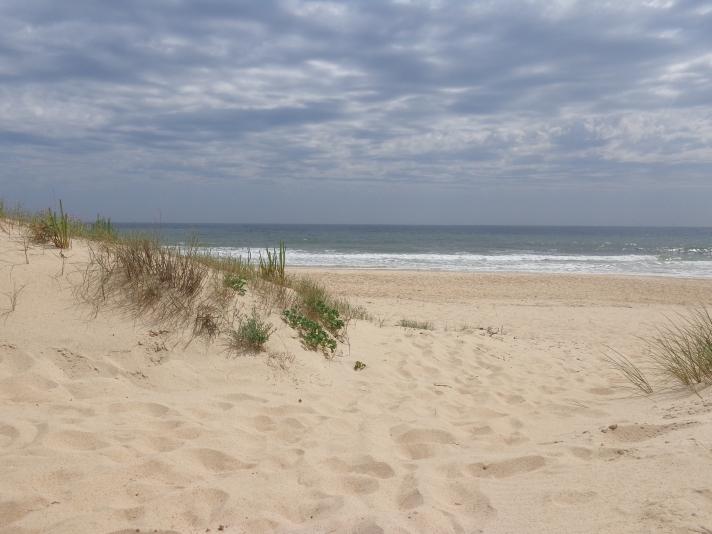Плажът в Монте Гордо